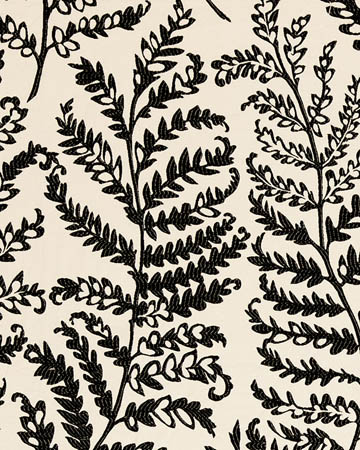 Clarke & Clarke Wild Fern Charcoal Curtains