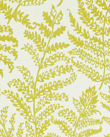 Clarke & Clarke Wild Fern Citrus Curtains
