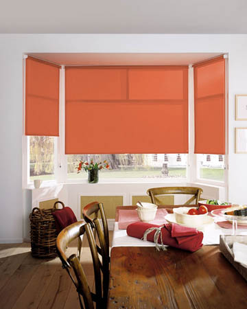 Eclipse Palette Burnt Orange Roller Blinds