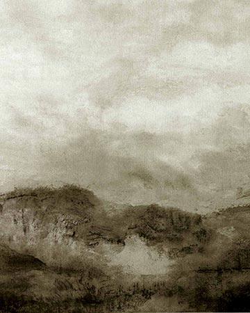 Clarke & Clarke Landscape Charcoal Roman Blinds